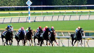 【アイビスSD】ベルカントが2馬身差をつけ快勝!