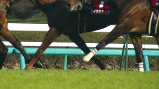 【スプリングS予想2017】エトルディーニュは本命サトノアレスの有力対抗馬!