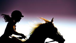 夏の2歳馬レースは単勝がお得!期間中払戻金上乗せのレースを見逃すな!