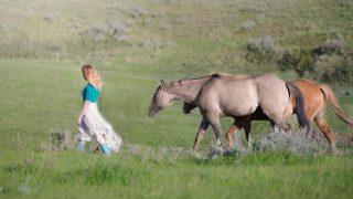 馬で買う?騎手で買う?2015年スプリンターズS予想の悩ましい点