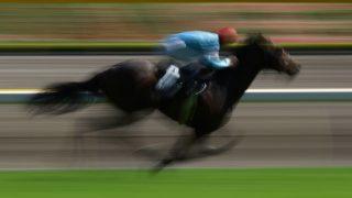 レーヴドスカー産駒レーヴァテインが新馬戦勝利