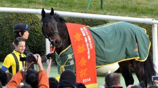 エキストラエンド現役引退、海外種牡馬入りは破談に