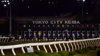【東京ダービー2016】JRAから移籍初戦のバルダッサーレが7馬身差の完勝!