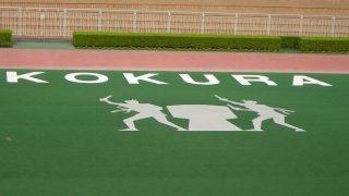 【小倉2歳S予想2019】小倉の馬場傾向や雨の影響は?先週の芝レースの脚質別・枠順別成績