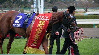 【注目新馬】メジャーエンブレム半妹メジャーラプソディがダートでデビュー