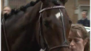 あの名牝に初仔誕生。日本競馬界に三度立ちはだかる壁となるか?