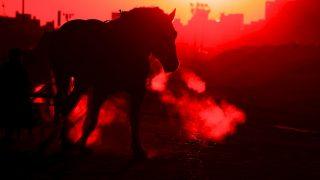 【オークス2018予想】トライアルからオークス制覇を狙うサトノワルキューレ