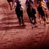【マーチS予想2019】荒れるハンデG3!テーオーエナジーやハイランドピークなど、出走予定馬を考察