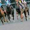 【宝塚記念2019予想】春のグランプリがいよいよ開催!キセキやレイデオロなど出走予定馬を考察