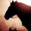 【レパードS予想2020】わくわくする血統のメイショウダジンが3歳ダート界の有力馬に名乗り出る!