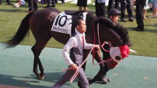 【鳴尾記念2019予想】宝塚記念への重要ステップ!ステイフーリッシュやギベオンなど出走予定馬を考察