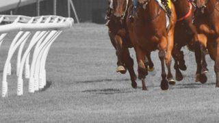 【秋華賞2019予想】牝馬3冠最終戦!ダノンファンタジーやクロノジェネシスなど出走予定馬を考察