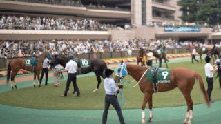 【東京新聞杯2020予想】春G1を目指すマイラーが集結!レイエンダやプリモシーンなど出走予定馬を考察