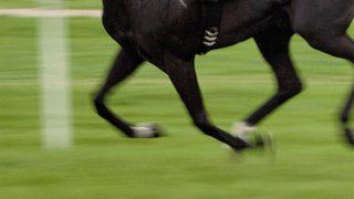 【福島牝馬S予想2020】一足飛びにオープンで実績積んだリュヌルージュ、再度の大駆けとなるか