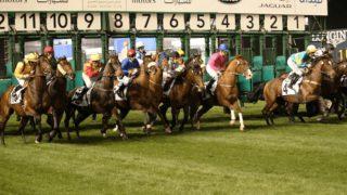JRA所属馬13頭が「ドバイWCデー」に選出・受諾