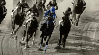 【東海ステークス2021予想】G1フェブラリーSへの重要ステップ!インティやダノンスプレンダーなど出走予定馬を考察
