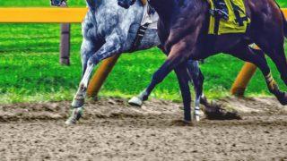 【毎日王冠2020予想】最終追い切り・調教内容が高評価の馬トップ3は?