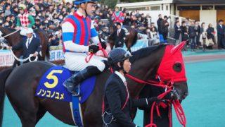 【帝王賞2020予想】ノンコノユメ、10年ぶり地方馬の勝利となるか