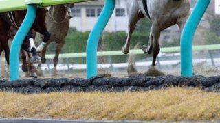 【中山牝馬S予想2021】最終追い切り・調教内容が高評価の馬トップ3は?