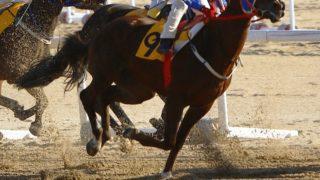 【東京スポーツ杯2歳S予想2020】最終追い切り・調教内容が高評価の馬トップ3は?