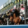 【日本ダービー2021】JRA、エフフォーリアやサトノレイナスなど登録馬18頭を発表
