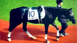 日米オークス制した名牝・シーザリオが死亡